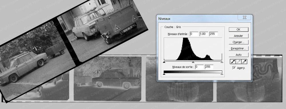 Résultat d'un scanner film 135 Noir et Blanc