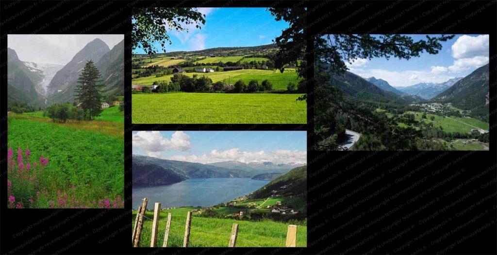 Premiers plans en photo de paysage