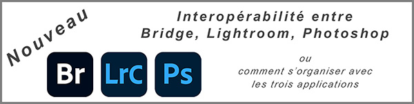 Interopérabilité Br Lrc Ps